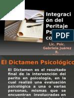 Integraciondelperitajepsicologicos 141211092935 Conversion Gate01
