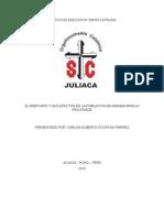 Ensayo El Mercurio y Sus Efectos en La Poblacion de Ananea Mina La Rinconada