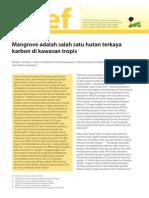 Daniel C. Donato, Et Al. 2012 Mangrove Adalah Salah Satu Hutan Terkaya Karbon Di Kawasan Tropis