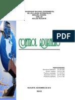 Control Aduanero (Stefhanie-unellez)