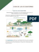 Clasificacion de Los Ecosistemas