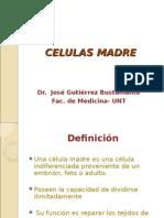 CELULAS MADRE 10.ppt