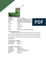 Laporan Praktikum Botani - Daun Kejibeling Dan Daun Sendok