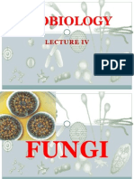 Microbiology Lecture Vi
