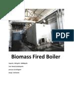 Biomass Fired Boiler manufacturer
