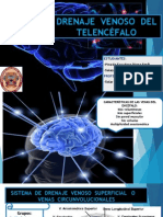DRENAJE-VENOSO-DEL-TELENCeFALO (1)