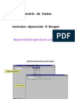 SD_06_DDIC.ppt