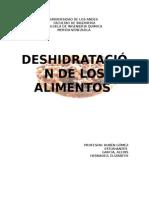 deshidratacion.docx