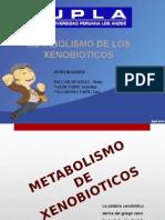 XENOBIOTICOS Diapositivas Lina