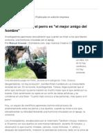 Explican Por Qué El Perro Es _el Mejor Amigo Del Hombre_ - 17.04.2015 - Lanacion