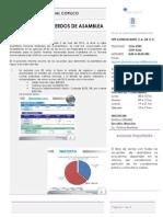 Informe Asamblea 5 de Julio 2015 8490788