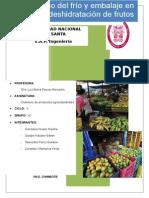 Daños Mecanicos en Frutos Informe Terminadoo