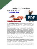 Dieta Cruda Para Tu Pastor Alemán