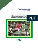 Flora Apícola Serra de Pelotas