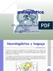 neurolingsticafinal-111026192957-phpapp01