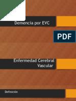 Demencia Por EVC
