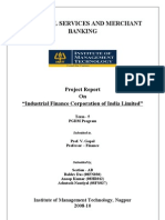 Financial Services and Merchant Banking