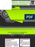 FOSFORILACION-OXIDATIVA.ppt