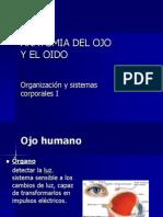 ANATOMIA DEL OJO (1).pdf