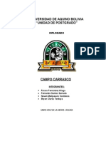 Informe Final Carrasco