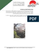 האגודה הישראלית ללימודי יפן - עלון מס' 12