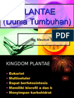 Plantae Dunia Tumbuhan