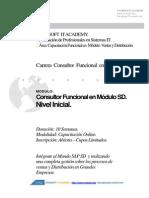 Temario Carrera Consultor Funcional Sap Sd Inicial