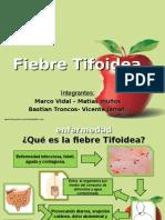 Disertacion Fiebre Tifoidea