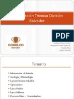 Tarea 1 Division Salvador