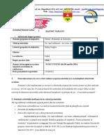 Raport NARATIV (1).docx