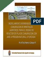 Modelamiento Bidimensional de Cianuracion de Minerales Auriferos