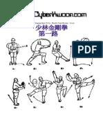 Shaolin Jingang Quan Yi Lu