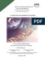 La Inestabilidad Genómica en Cáncer