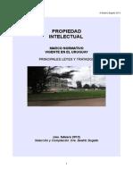 MN Propiedad Intelectual Feb 2013 SÍNTESIS