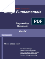 Cs9261 Image Fundamentals