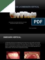 recuperacindeladimensinvertical-121206130018-phpapp02