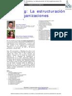 4. La Estructuración de Las Organizaciones