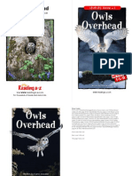 raz li34 owlsoverhead clr (1)