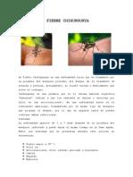 Fiebre Por Chikungunya