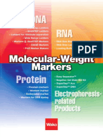 Molecular Weight Markers