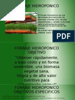 Presentacion Forraje CC