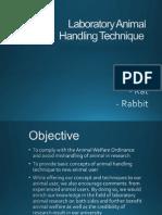 Animal Handling Technique