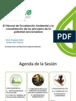 7. El Tribunal de Fiscalización Ambiental y La Consolidación de Los Principios de La Potestad Sancionadora