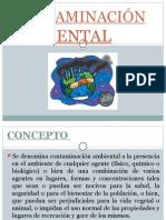 CONTAMINACIÓN-AMBIENTAL