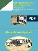 02.- 210115_diligencias Preliminares - Dr. Luis Toribio Paulino
