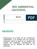 Plan Ambiental Nacional