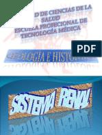 Diapositiva Renal i