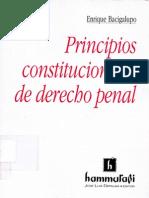 Principios Constitucionales de Derecho Penal - Enrique Bacigalupo.
