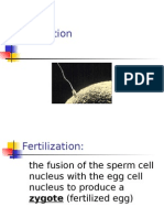 Fertilization-Early Embryo Dev't