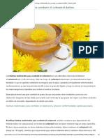 Hierbas Medicinales Para Combatir El Colesterol Dañino